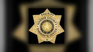 70-year-old man struck, killed by vehicle near Sam Houston Race Park