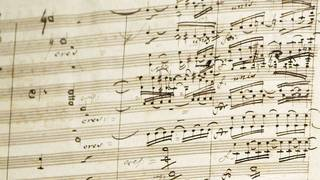 Slovakian woman arrested for playing same opera song for 16 years
