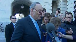 Schumer: There needs to be a big deal for the government to reopen