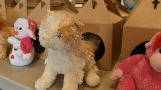 Local kids learn importance of pet care by adopting stuffed animals