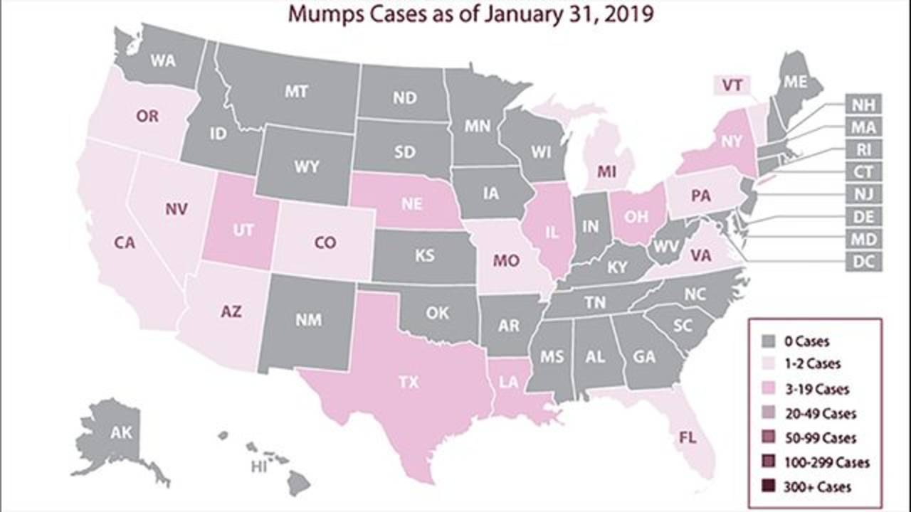 mumps cases as of Jan. 31, 2019_1549748456356.PNG.jpg