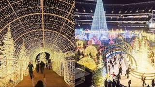 Enchant Christmas.Tickets On Sale For World S Largest Christmas Light Maze In