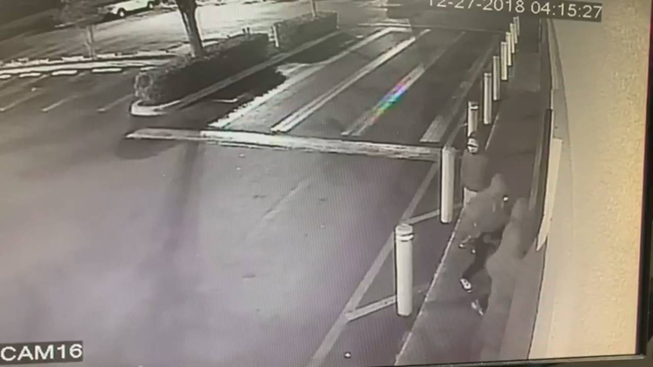 Thieves outside Sedano's in North Lauderdale