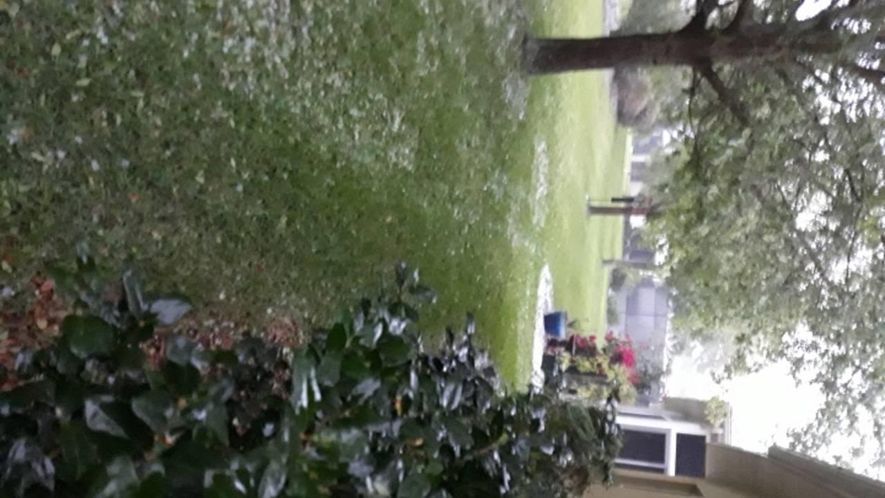 Hail 2