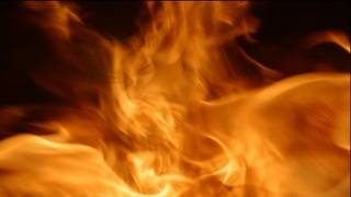 Woman, dog rescued from house fire