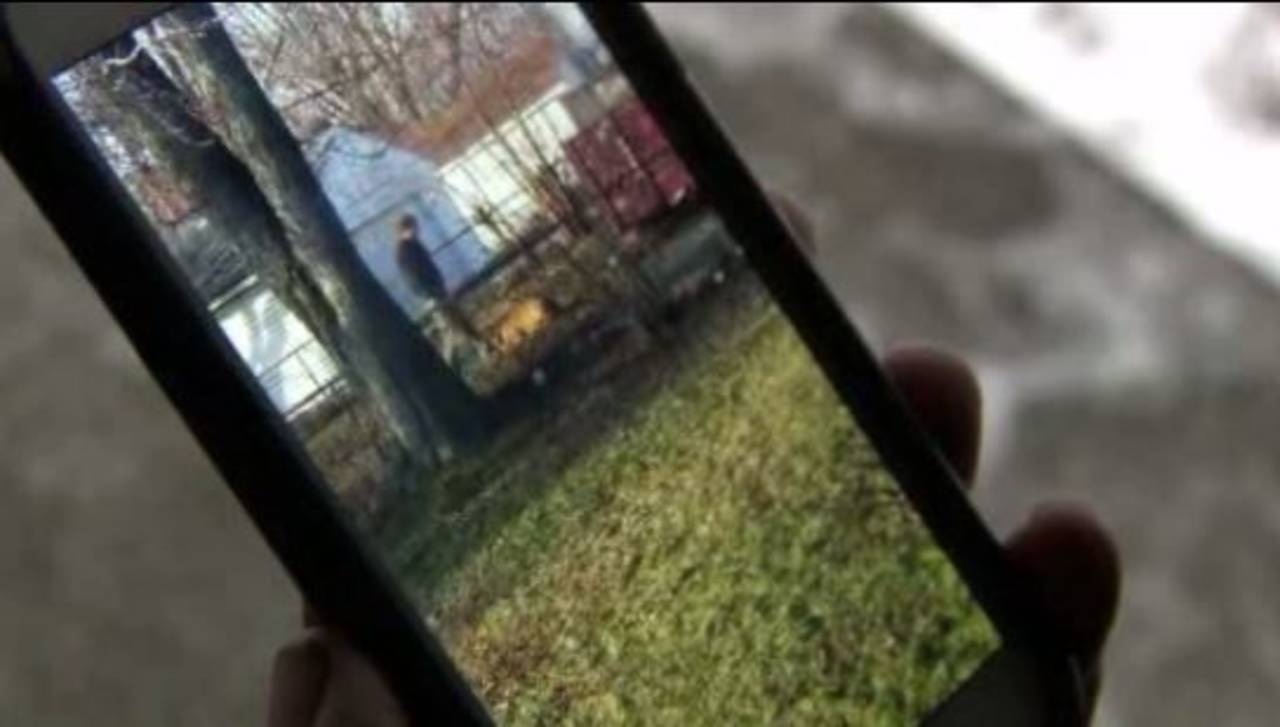 Video of Eastpointe dog abuse