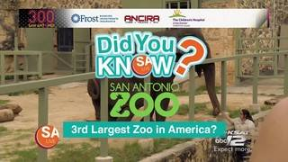 DYK: The San Antonio Zoo is the 3rd largest in America?
