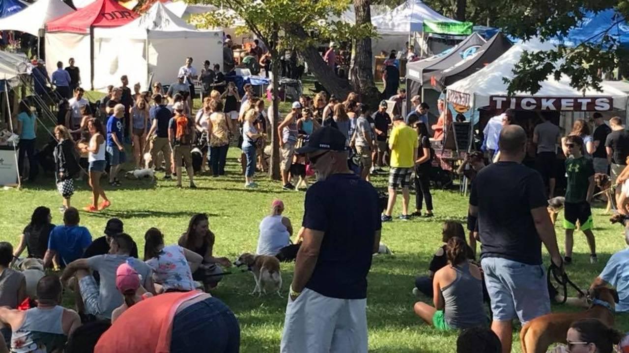 Barktoberfest Crowd Shot 2017