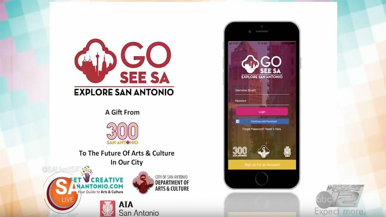 SA300 app_.jpg