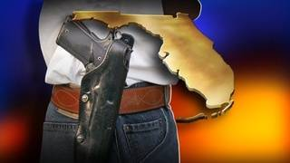 Stand your ground's 'forcible felony' standard will be tested in 2015&hellip&#x3b;