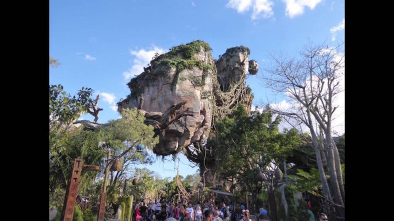 05_Disney's Animal Kingdom_Orlando, FL_1532435101472.jpg.jpg