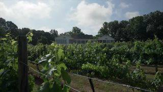Bedford Wine Trail: White Rock Winery