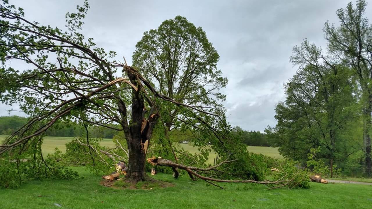 Halifax-County-storm-damage-4-19-19-3_1555956788681.jpg