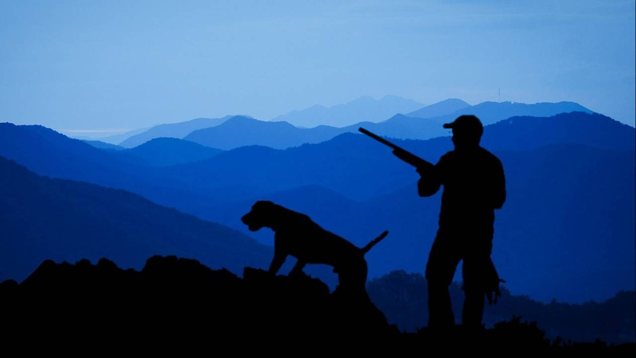 hunting-pixabay_1567466550138.jpg