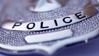 Man calls police 'smurfs,' slapped with $200 fine