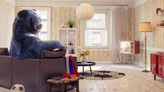 You're covered: 4 unusual homeowners claims you didn't think would ever happen