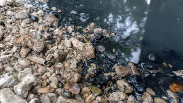 Black residue on the banks of Skull Creek near Altair, Texas, on April 11, 2019.