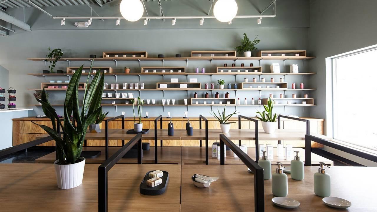 Ann Arbor Pharmacy concept