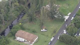 Landscaper killed in apparent tree-trimming accident in Plantation