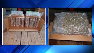 More than 80 pounds of marijuana seized at Blue Water Bridge in Port Huron