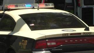FHP: Putnam County man hit, killed by pickup on CR 309