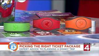 Expert Advice To Planning A Disney Trip