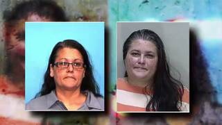 Felon accused of running legal aid scam arrested