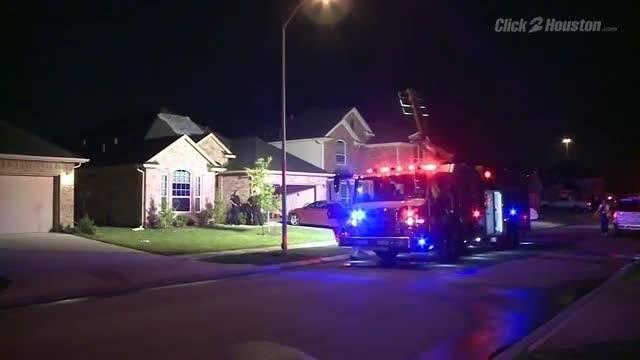 Massive House Fire Kills Family Dogs