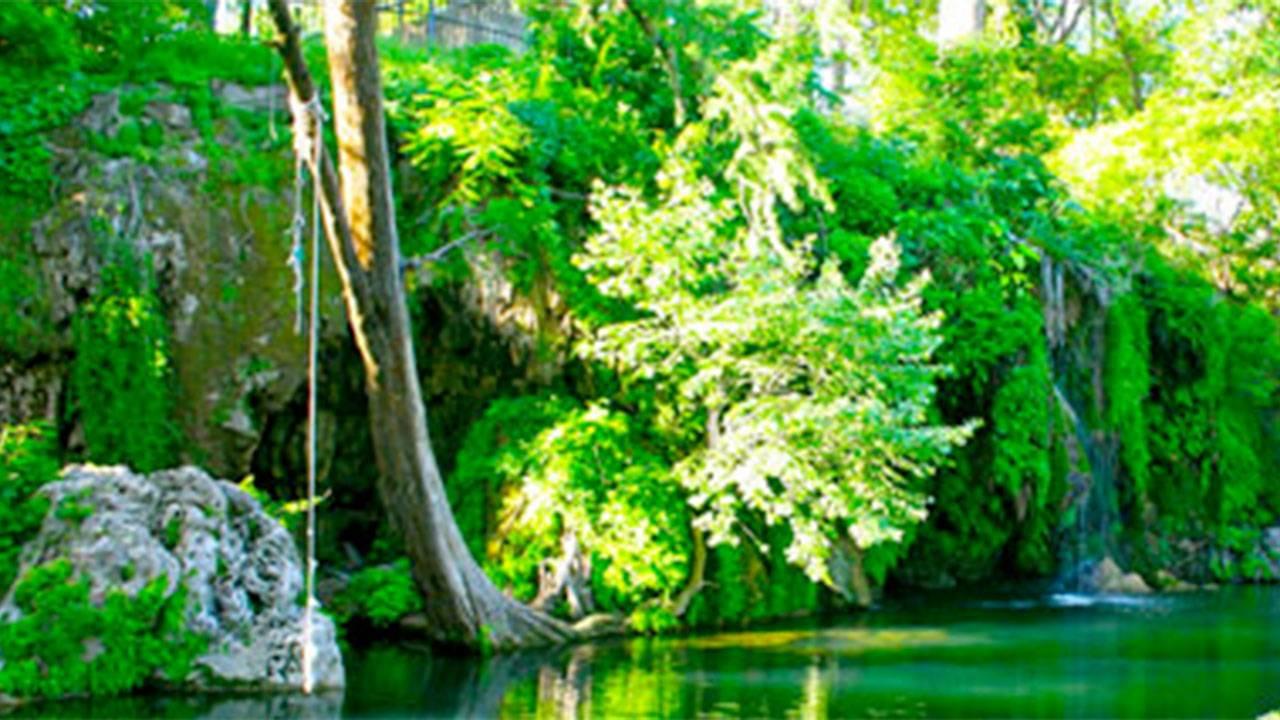 Krause Springs.jpg