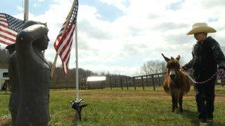 President of Botetourt County farm named Red Cross Military Hero