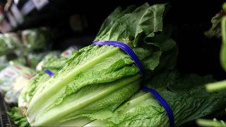 Romaine lettuce warning: Americans, Canadians warned not to eat it due&hellip&#x3b;