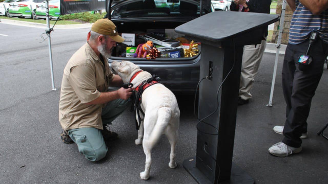 Veteran-dog-car-2_1542307739785.jpg