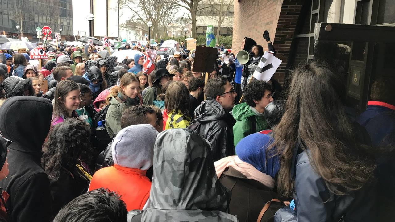 Climate change strike Fleming