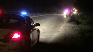 2 horses killed, 3 people hurt in crash in northwest Miami Dade