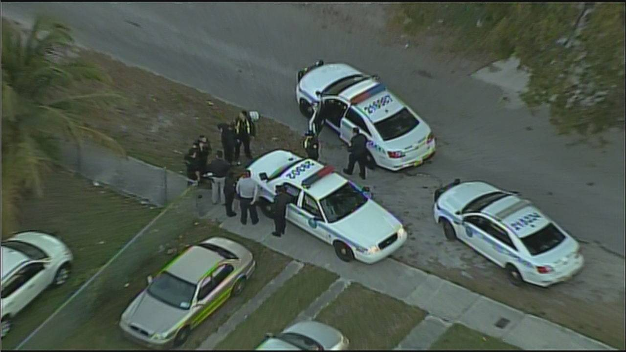 2 apprehended after carjacking in miami