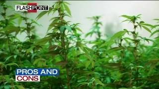 Flashpoint 10/28/18: Debating marijuana legalization&#x3b; Rehashing the&hellip&#x3b;