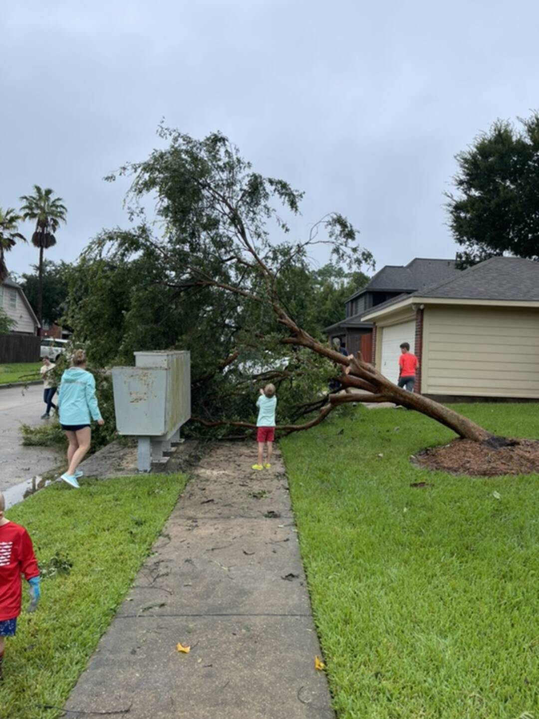 Lost a tree in Pearland. Awesome neighbors were cutting it down before I even woke up.