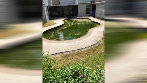 Green pool becomes neighborhood nuisance in Missouri City