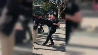 Conservative activist punched at UC Berkeley