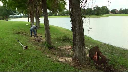 Legal battle brewing in Fort Bend County neighborhood in effort to save trees