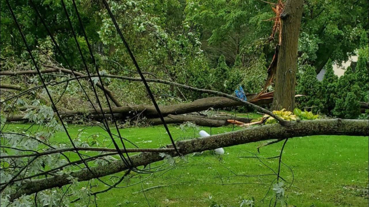 Storm damage three final_1568479669357.jpg.jpg