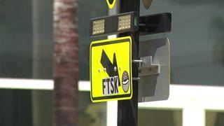 Biscayne Boulevard pedestrians play dangerous real-life game of Frogger