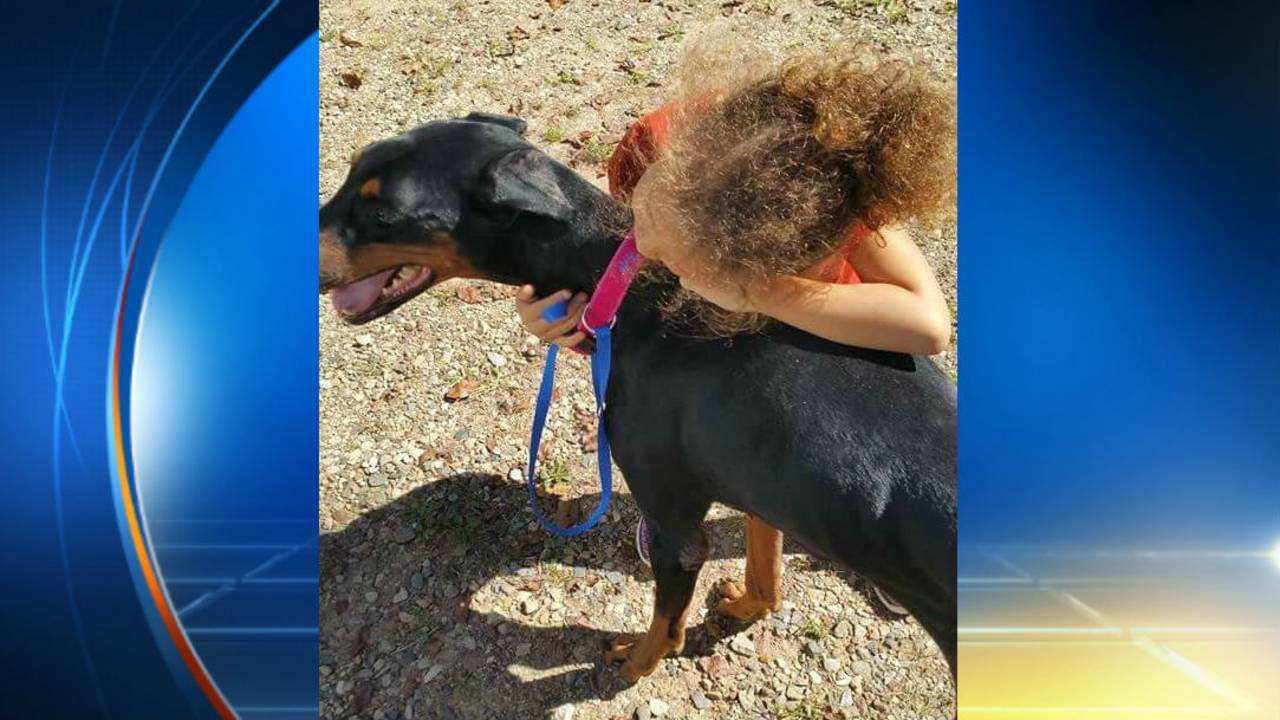 4-year-old Kiyana McNeal attacked by family dog