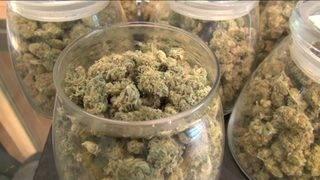 Lawmaker files pot decriminalization bill