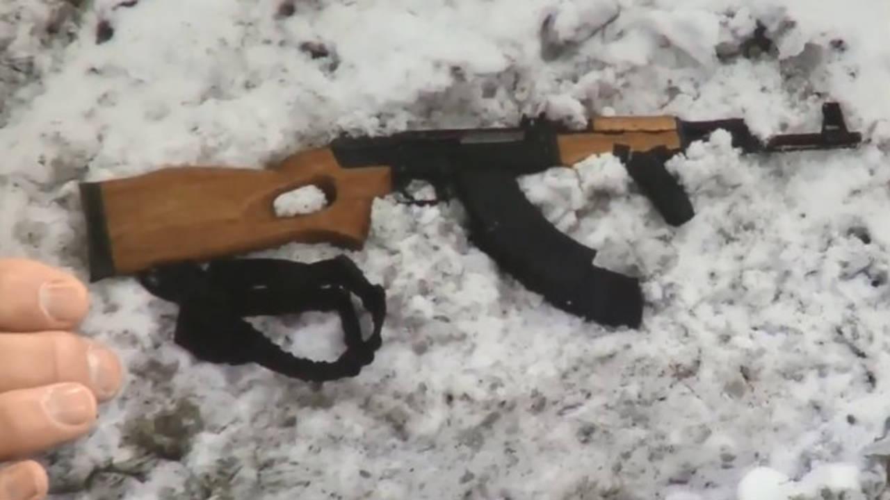 Assault rifle Taylor shooter