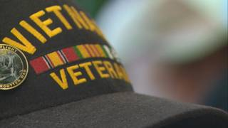 State expanding program in which veterans help other veterans