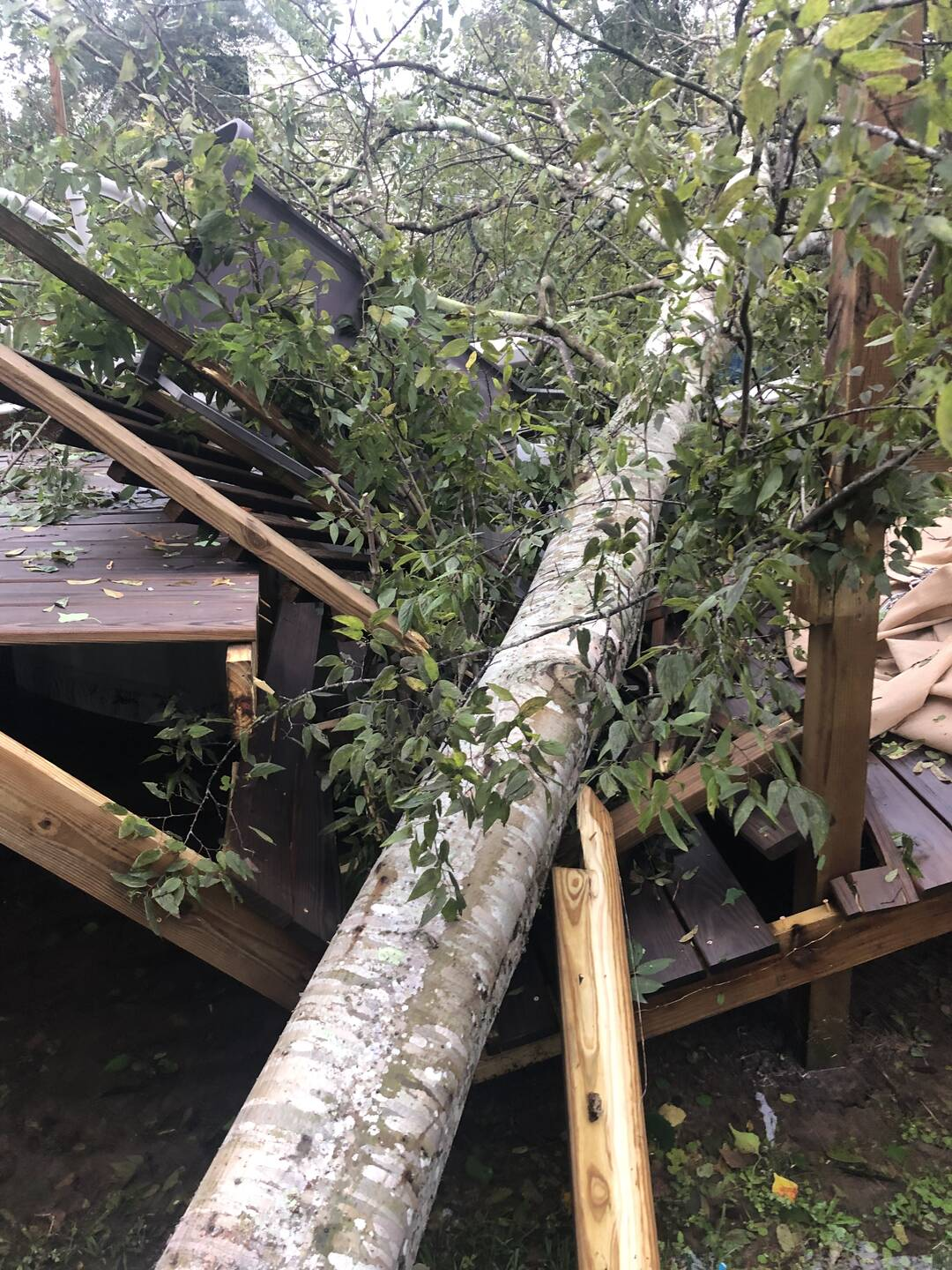 Santa Fe, tree took out my deck and pool