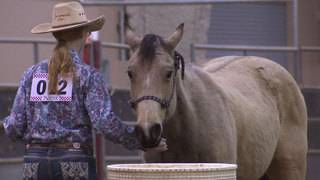 Youth Rodeo features new Horse Challenge event