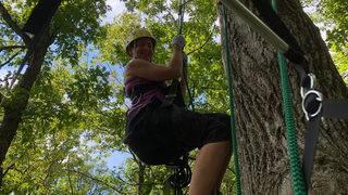 Tree climbing isn't just for kids
