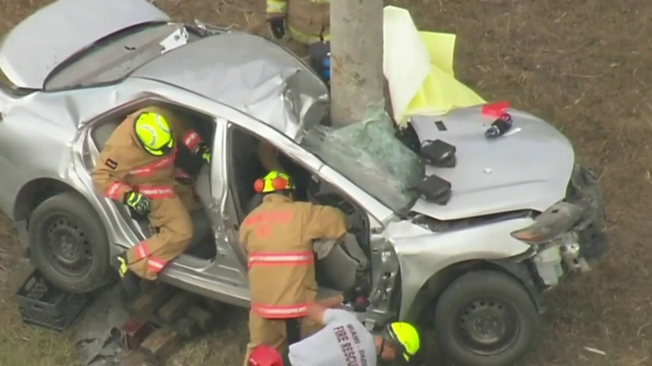 Family of driver in palm tree crash says 'it's a miracle